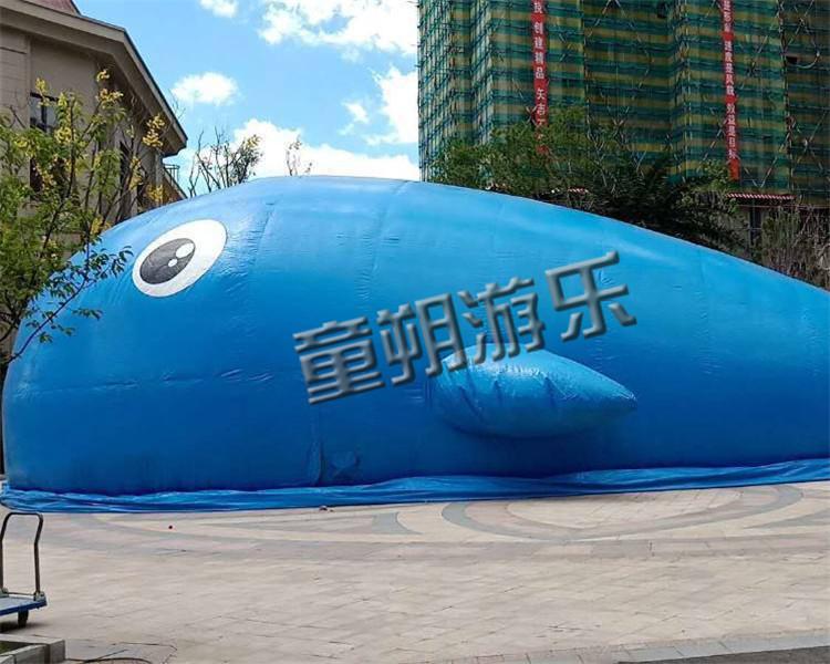 鲸鱼岛乐园